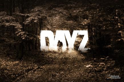 dayz-100041645-orig